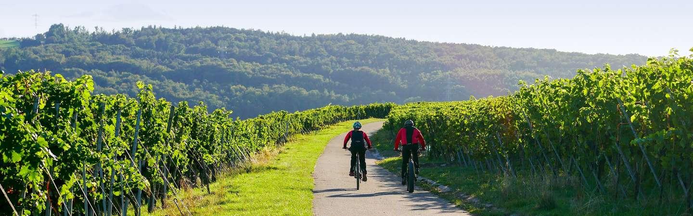 Reiseziel Mosel Radtouren